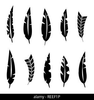 Satz von verschiedenen Vogelfedern. Schwarze Silhouetten auf einem weißen Hintergrund, Vector Illustration. - Stockfoto