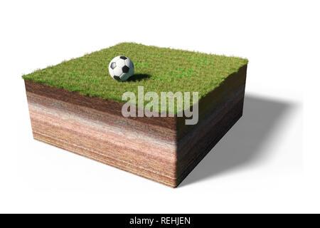 Querschnitt Von Rasen Und Boden Stockfoto Bild 50997502
