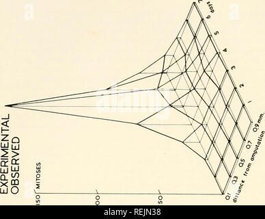 . Colchicin in der Landwirtschaft, der Medizin, der Biologie und der Chemie. Colchicine; Colchicin. . Bitte beachten Sie, dass diese Bilder sind von der gescannten Seite Bilder, die digital für die Lesbarkeit verbessert haben mögen - Färbung und Aussehen dieser Abbildungen können nicht perfekt dem Original ähneln. extrahiert. Eigsti, O.J. (Orie Jakob), 1908 -; Dustin, Pierre. Ames, Iowa State College drücken Sie