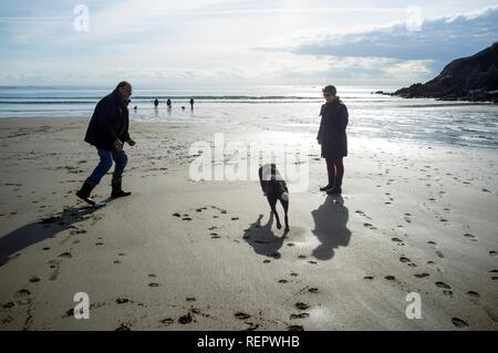 Hunde und ihre Besitzer auf Wonwell Strand im Winter bei Ebbe, South Hams, Devon, Großbritannien - Stockfoto