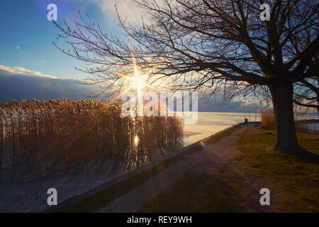 Winter-See-Szene - Stockfoto
