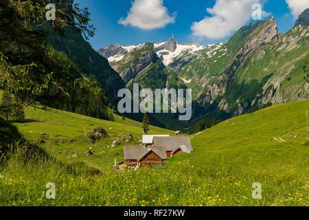Almhütte im Sommer Wiese, im Hintergrund die Berge Säntis Gipfel, Wasserauen, Appenzell, Schweiz - Stockfoto