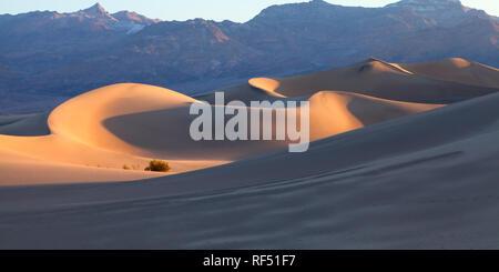 Am frühen Morgen Sonnenlicht kriecht in der Wind fegte Vertiefungen des Death Valley Mesquite Flachbild Dünenfeld. - Stockfoto
