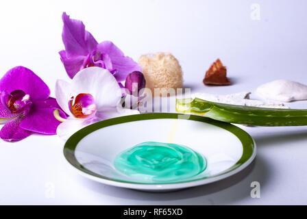 Nahaufnahme von Wellness Produkte, eine Kerze, Steine, eine Schönheit schwamm, ein Sea Star, Handtuch, Blumen, ein Naturschwamm, Aloe vera, Aloe vera Gel, Holz - Stockfoto