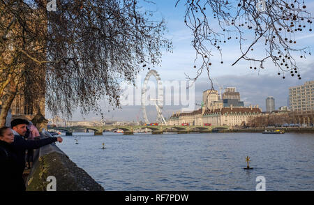 Blick auf das London Eye Attraktion aus dem Houses of Parliament in Westminster UK - Stockfoto