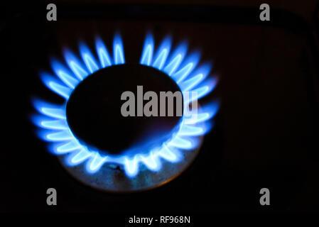 Gasherd Flamme. Blaue Flamme aus einer gasbetriebenen Herd steigen Sie auf einem schwarzen Hintergrund. Blau Erdgas Flamme von einem Herd Gerät. Platz für Kopie - Stockfoto