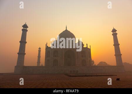 Agra, Uttar Pradesh, Indien. Ein Blick auf das Taj Mahal bei Sonnenaufgang in Agra, Indien - Stockfoto