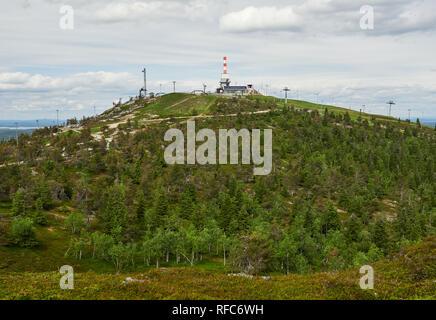 Sommer Wald Blick auf Rukatunturi, fiel und ein Skigebiet in Kuusamo - Finnland. Friedliche immergrüne Bäume in der saubere und grüne Natur Landschaft von F - Stockfoto