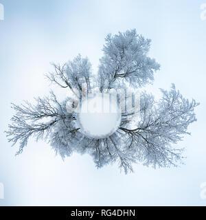 360 Grad Panorama, kleinen Planeten Erde winter wald landschaft - Stockfoto