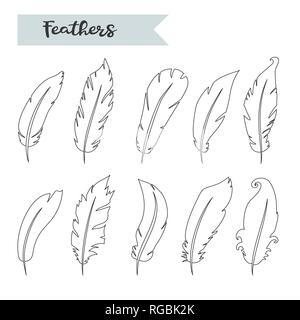 Vektor Federn, Symbol, Zeichen, Symbol, Set, Sammlung isoliert Vektor - Stockfoto