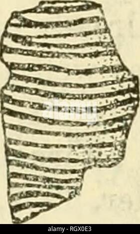 . Bulletin. Ethnologie. Abbildung 82. - Keramik Leitung Fragmente von Scott County, 14 SC 1, Rio Grande Pueblo Einfluss in der Dekoration oder bit Ausarbeitung (^r). Tatsächliche Größe. 69, 6, (USNM 386878) ist von Interesse weiter wegen des gut gemachten Offset von ca. 4 mm. Am Ende der Schüssel. Die aufwendige Stammzellen in der Platte 69, d, (USNM 386842) bereits festgestellt wurde. Nicht gezeigt wird, ist eine stark verkrusteten Schüssel Fragment (USNM 386972) mit über 20 eng gesetzt, aber ungleichmäßig verteilt sind parallele Linien, die anscheinend das Rohr umgeben; und ein kleineres Stück (USNM 386808) mit 5 parallelen Linien einzukreisen. Die drei Ston - Stockfoto
