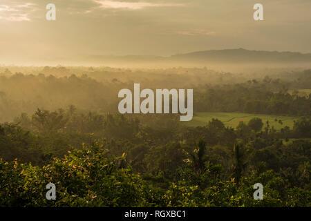 Schönen tropischen Mountain Mist im Regenwald mit Nebel von Sumatra - Stockfoto