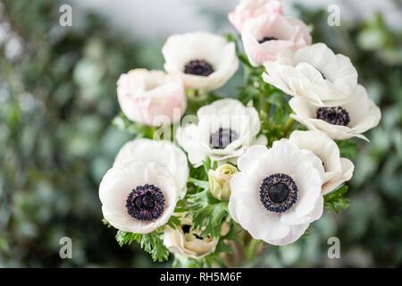 Rosa und weissen Anemonen in glass vase. Bündel Pastelltönen. Das Konzept der Floristen in einem Blumenladen. Tapete. - Stockfoto
