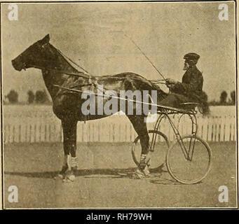 . Züchter und Sportler. Pferde. $ lte gveeosx Ana grpurtsman [Juli 15, 1905 IN DER NÄHE VON LOS ANGELES. ^ FÜNFTER TAG. Los Angeles, 7. Juli war es ein Tag der Überraschungen bei landwirtschaftlichen Park, als Außenseiter in den beiden Rennen, die beendet wurden, gewann das Wetten, und die erste Wahl in der dritten Rasse schien in einem schlechten Weg, wenn die Rennen wegen der Dunkelheit wurde verschoben. Der Spaß begann mit den drei Jahre alten Stimulation Rasse, in whioh der zwei Jahre alte Colt Rockaway war einer der Starter, und das Talent, das ihn das Geld auf die Stärke seiner guten Rennen von wednes zu gewinnen - Tag, nahm er einen Datensatz - Stockfoto