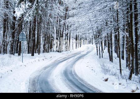 Rutschigen eisigen Straße durch den Wald mit Bäumen und Schnee auf beiden Seiten