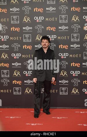 Sevilla, Spanien. 2. Feb 2019. fotoshooting während der Etagen 33 jährliche Goya Filmpreis in Sevilla, am Samstag, den 2. Februar, 2019. Credit: CORDON PRESSE/Alamy leben Nachrichten - Stockfoto