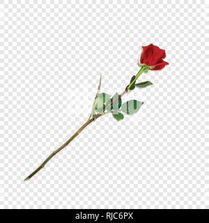 Vector Illustration von Photo-realistisch, sehr detaillierte Blume der Roten Rose isoliert auf Transparenten Hintergrund. Schöne Bud der Rote Rose auf langem Stiel. - Stockfoto