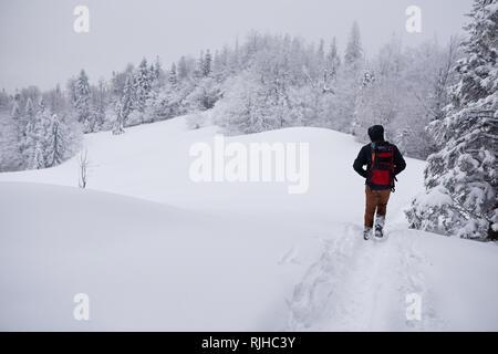 Wanderer entlang eine verschneite Wald Weg im Winter - Stockfoto