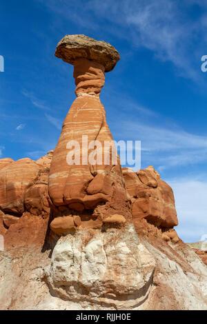 Der fliegenpilz Hoodoos, einem Gebiet von fliegenpilz geformte ausgewogene Felsen im Grand Staircase-Escalante National Monument in Utah, USA. - Stockfoto