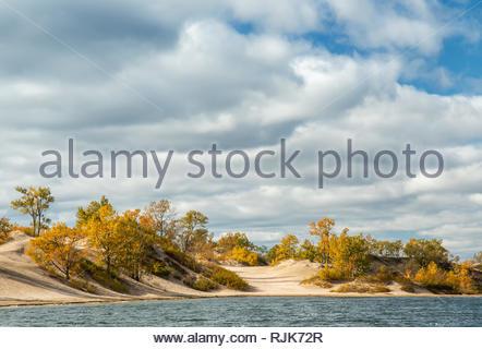 Aspen und Birken im Herbst Farbe auf Sanddünen mit bewölktem Himmel Sandbänke Prov park Ontario Kanada - Stockfoto