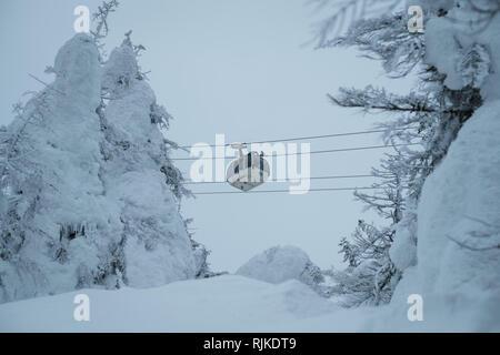 """Eine Seilbahn führt durch Schnee monster Bäume, am 6. Februar 2019. Ursache eine warme Winter die Saison für seltsam geformte, schneebedeckte Bäume, nicknamed jetzt Monster"""" vorbei ist. 'Monsters' in der Regel den Hängen des Mount Zao in Japan. Mount Zao, einer 1.841 hohen Vulkan gebietsübergreifende Yamagata und Miyagi Präfekturen, ist einer der wenigen Orte in Japan, wo das Phänomen der jetzt Monster"""" gesehen werden kann. Starke Winde über den nahe gelegenen See schleudern Wassertröpfchen, die Freeze gegen die Bäume und ihre Äste bis in der Nähe von - horizontale Eiszapfen fangen an sich zu bilden. Fallenden Schnee auf dem Eis Formationen und das Ende - Stockfoto"""