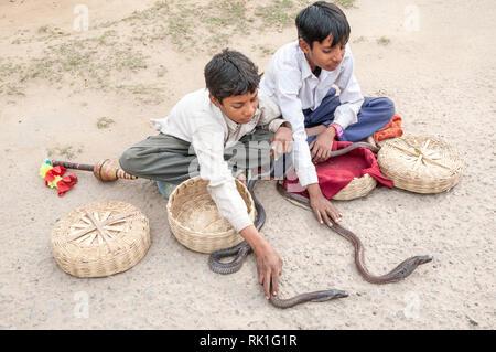 Zwei Jungen zeigen Kobras in einem Dorf außerhalb von Agra. Schlange zeigt, und Snake ist charmant in Indien beliebt. - Stockfoto