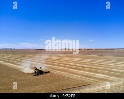 Antenne von Gerste aus Ernten mit einem Harvester Eyre Halbinsel südlich kombinieren Australien - Stockfoto