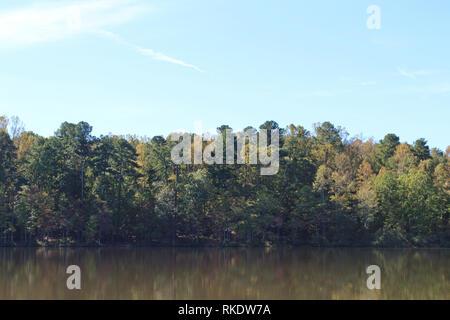 Eine dichte Baumreihe entlang der Ufer des Großen See auf der Ems Zweig Trail in Umstead State Park, North Carolina, USA, auf einem hellen, dunstiger Tag - Stockfoto