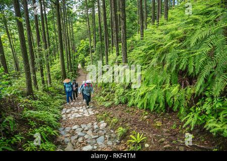 Kumano Kodo Pilgerweg. Weg zum Grand Schrein, Kumano Hongu Taisha. Nakahechi. Präfektur Wakayama. Kii Halbinsel. Kansai Region. Honshü - Stockfoto