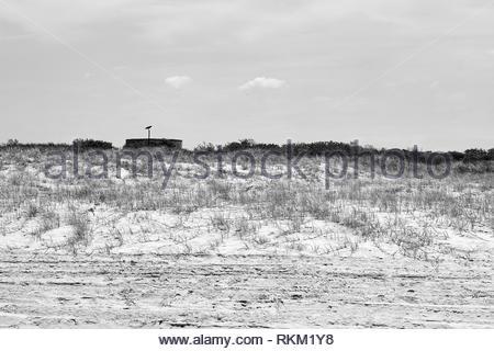 Eine australische Raben (Corvus coronoides), sitzt symbolisch auf einem fernen Post auf einem Stausee, hinter dem grasbewachsenen Strand sand-Dünen nördlich von Iluka. - Stockfoto
