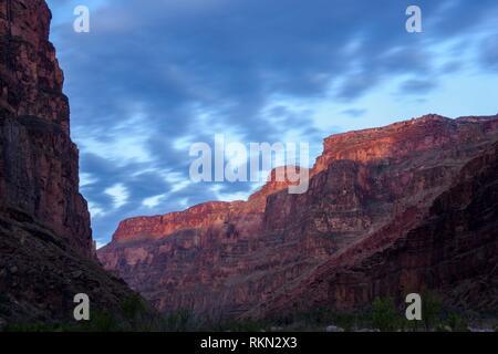 Morgen Licht auf den Grand Canyon Wände bei Cove Canyon, Grand Canyon National Park, Arizona, USA. - Stockfoto
