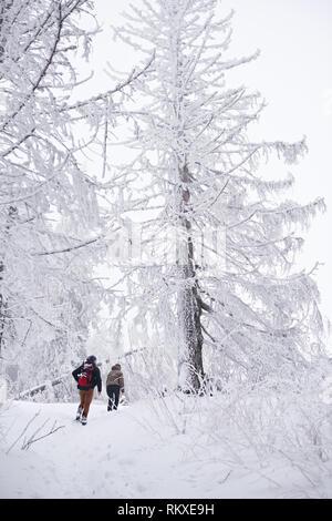 Rückspiegel von ein paar wandern auf einem Pfad durch den verschneiten Wald während heraus für eine Winterwanderung - Stockfoto