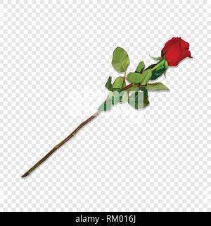 Foto realistisch, sehr detaillierte Rote Rose auf langem Stiel isoliert auf Transparenten Hintergrund. Schöne Bud der Blume. Clip Art für Valentinstag, Liebe, Mi - Stockfoto