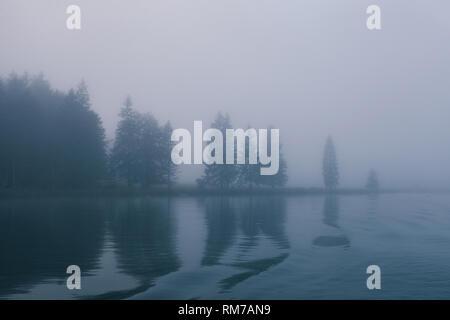 Blick auf den Wald unter Nebel in Grenze des Sees mit geheimnisvollen Bäume - Stockfoto