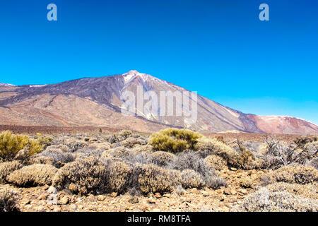 Parque Nacional del Teide, Teneriffa - Stockfoto