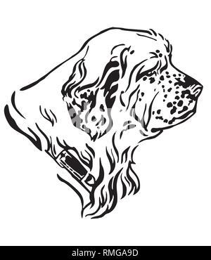 Dekorative Umrisse Portrait von Dog Clumber Spaniel Suchen im Profil, Vector Illustration in schwarzer Farbe auf weißem Hintergrund. Bild für desi - Stockfoto