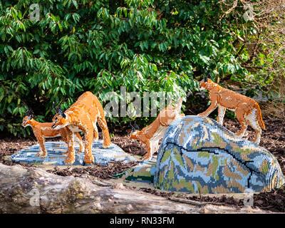 Karakal Familie Modell, einige Der lifesize Lego große Katzen in Chester Zoo - Stockfoto