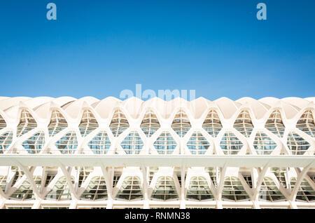 VALENCIA, Spanien - Januar 28, 2019: Museum der Künste und der Wissenschaften in Valencia ein schöner Tag - Stockfoto