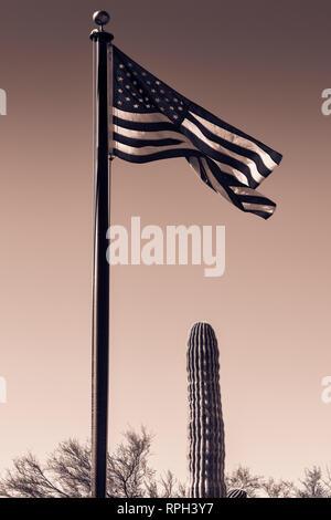 Ein hoher Fahnenmast mit einer amerikanischen Flagge im Wind neben einem Saguaro Kaktus gegen den Himmel in ein dramatisches Bild des Südwestens in Sepia zu - Stockfoto
