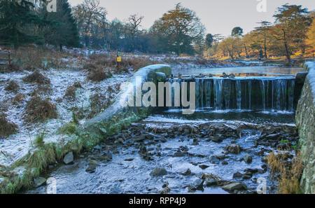 Enten über dem Wasserfall in einem frostigen Morgen winter Szene in Bradgate Park in der Nähe von Leicester, Leicestershire, Großbritannien - Stockfoto