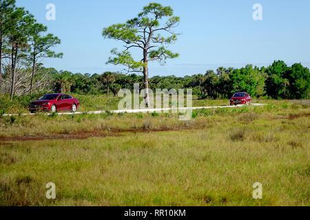 Autos auf den schwarzen Punkt Wildlife Drive, Loop, auch Meilen, Auto tour Merritt Island National Wildlife Refuge - Stockfoto