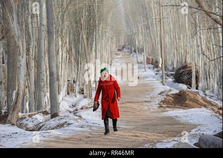 CHINA Provinz Xinjiang, uigurischen Stadt Opal in der Nähe von Kashgar, Frau im roten Mantel entlang Pappel Allee/China Provinz Xinjiang, uigurische Stadt Opal in Kashgar, hier lebt das Turkvolk der Uiguren, das sich zum Islam bekennt - Stockfoto