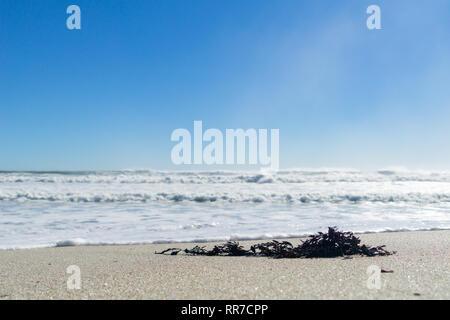 Turbulente Meer am Mount Maunganui Main Beach, Tauranga Neuseeland - Stockfoto