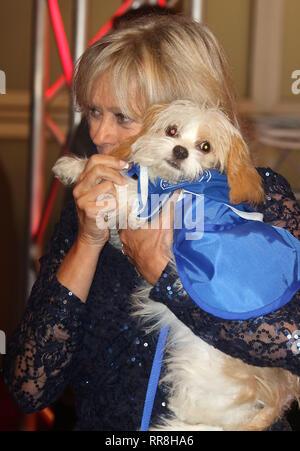 Dec 12, 2015 - London, England, UK-Battersea Hunde & Katzen Home Halsbänder und Mäntel Gala Ball - Roter Teppich Ankünfte Foto zeigt: Sue Barker - Stockfoto
