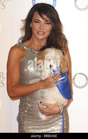 Dec 12, 2015 - London, England, UK-Battersea Hunde & Katzen Home Halsbänder und Mäntel Gala Ball - Roter Teppich Ankünfte Foto zeigt: Lizzie Cundy - Stockfoto