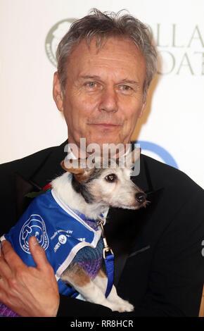 Dec 12, 2015 - London, England, UK-Battersea Hunde & Katzen Home Halsbänder und Mäntel Gala Ball - Roter Teppich Ankünfte Foto zeigt: Anthony Head - Stockfoto