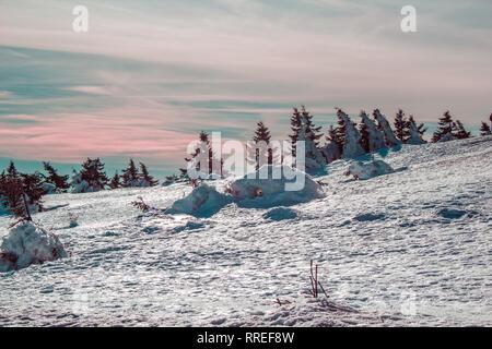 Verschneite Landschaft auf den Brocken, Harz Mountains National Park, Deutschland - Stockfoto