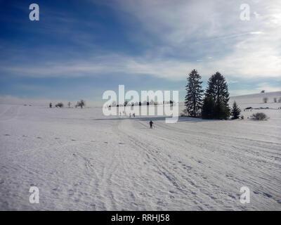 Langlauf Wanderwege auf Snowy Plains mit Nadelwäldern in der Nähe von Nové Město na Moravě, Böhmisch-mährischen Hochland, Tschechische Republik - Stockfoto
