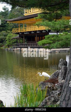Kinkakuji Tempel des Goldenen Pavillon, auch bekannt als Rokuon-Ji, Kyoto - Stockfoto
