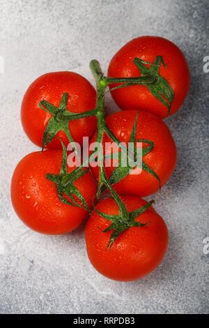 Frische saftige reife Tomaten mit Wassertropfen auf einem Zweig. Bio Gemüse. Selektiver Fokus - Stockfoto